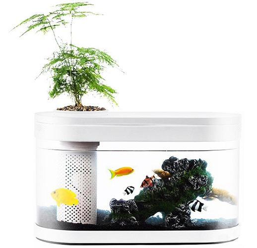 Аква-ферма Xiaomi Descriptive Geometry Amphibious Ecological View Fish Tank (HF-JHYG 001)